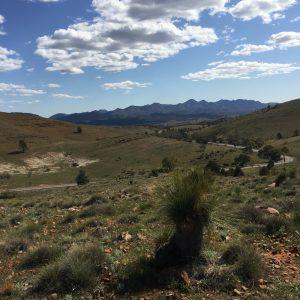 Ruth le Cheminant Flinders Ranges #1