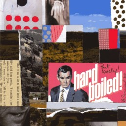 Ruth le Cheminant Hard Boiled 2016 mixed media on paper 21x15cm