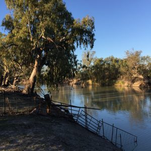 Edge of the Darling River, Evandale out of Pomona NSW