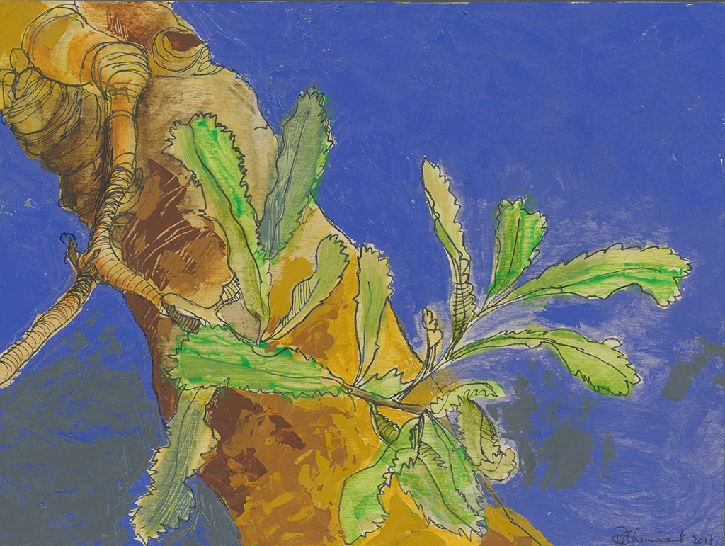 Ruth le Cheminant Trunk of the Old Man Banksia 2017 acrylic apint and pen on board 30cm x 23cm