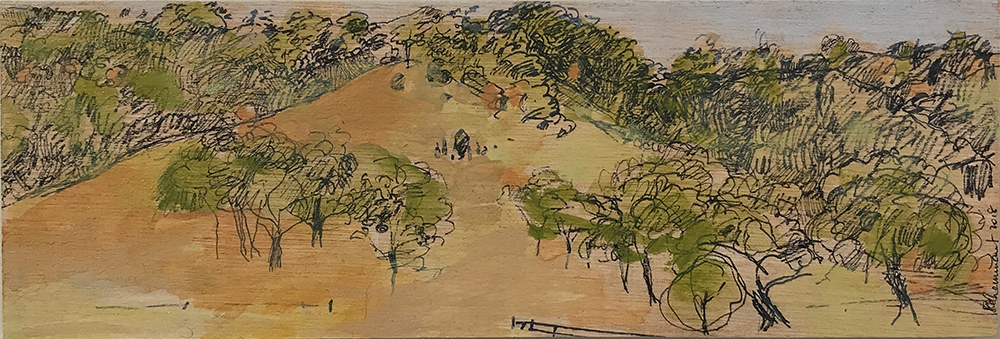 Ruth le Cheminant The Hill over the Road at Little Kickerbell pen & acrylic paint on board 10cm x 30cm